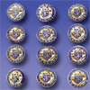 "No. 500 SET - SET of Officer Pins (3/4"")"